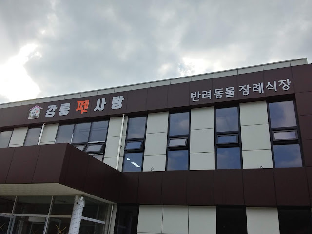 강릉 반려동물 장례시장, 강릉펫사랑 12월 오픈