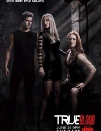 True Blood 2 | Bmovies