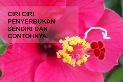 3 Ciri Ciri Penyerbukan Sendiri Dan Rujukan Bunga Yang Mengalaminya