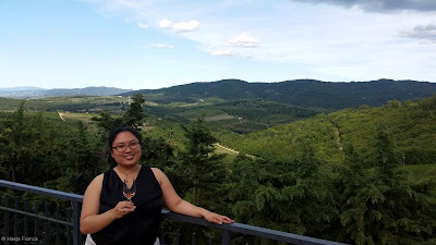 Overlooking Chianti's rolling hills
