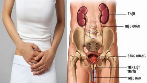 Bệnh lý viêm đường tiểu ở nữ tác hại hơn bạn nghĩ-benhlynamkhoa115.blogspot