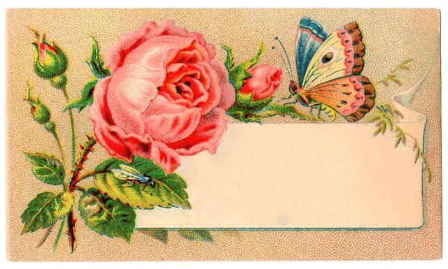 Image ancienne pour étiquette