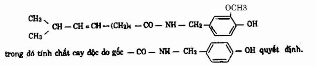 Thành phần hóa học trong Ớt - Capsicum annuum - Nguyên liệu làm thuốc Chữa Bệnh Tiêu Hóa