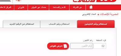 رابط شركة المصرية للاتصالات الاستعلام عن قيمة فاتورة التليفون