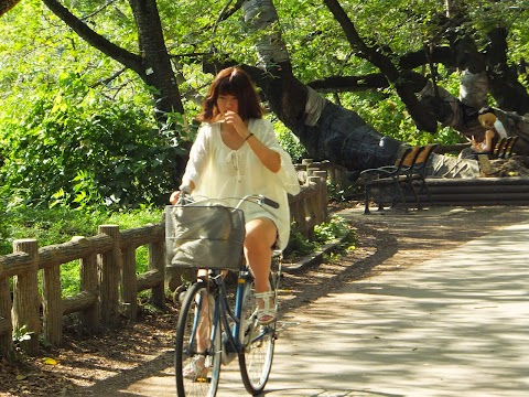 Common Complaints about Japanese Cyclists Refuted