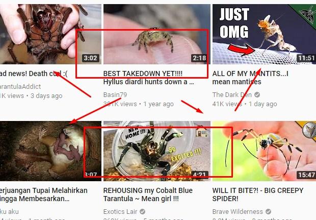 Cara Download Video Youtube 2018
