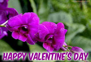 happy valentine day images for love roses
