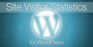 Download Site Visitor Statistics for WordPress v3.3