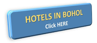 http://hotel.visit-the-philippines.net/hotels?ts_code=d102b&sub_id=&locale=en&utm_source=d102b&utm_campaign=WAN_Affiliate&utm_content=text_link