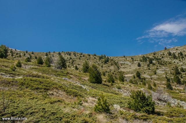 Pelister Panorama - Neolica Hiking Trail, Bitola, Macedonia