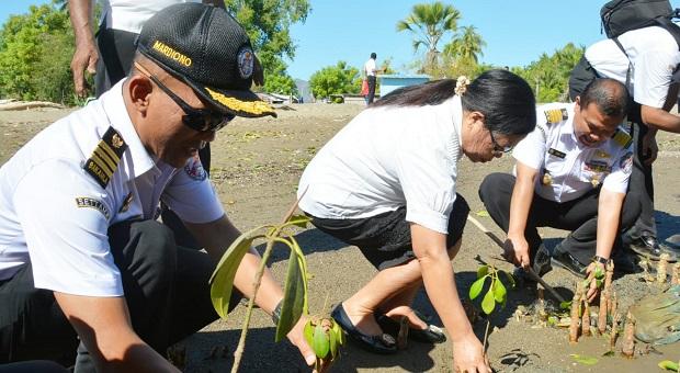 Bakamla Tanam Mangrove di Perbatasan Indonesia-Timor Leste