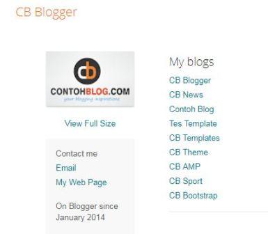 profil cb blogger
