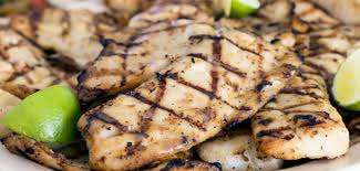 protein nutrition