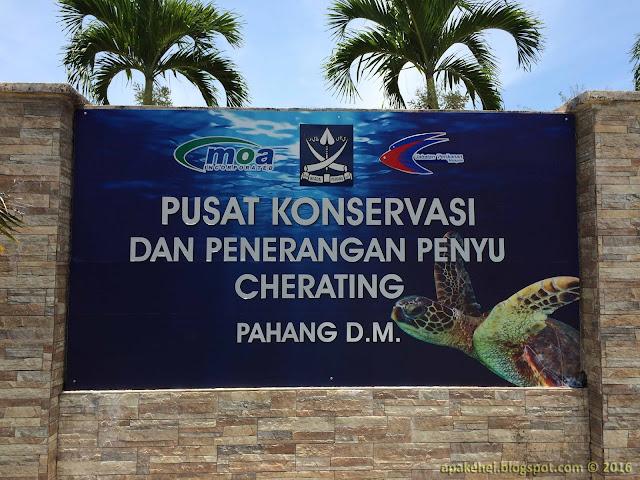 Pusat Konservasi Dan Penerangan Penyu, Cherating