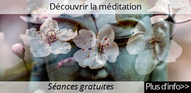 http://drikungkagyuparis.blogspot.fr/p/mes-premiers-pas-dans-la-meditation.html