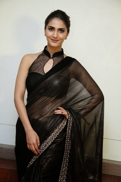 South Indian Actress Vaani Kapoor Photo