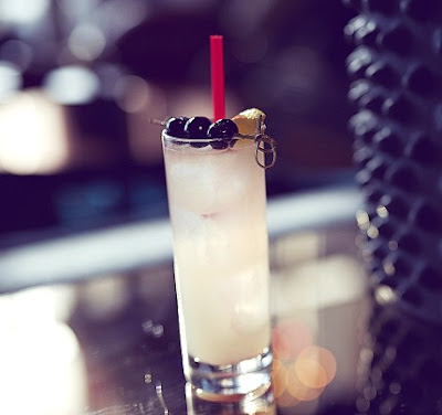 Classic Tom Collins Recipe
