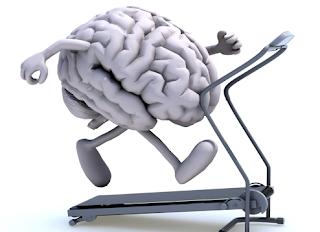 beyin, beyin nedir, beyin egzersizleri, beyne faydalı şeyler, beyni geliştiren şeyler, beyni geliştirmek için yapılan egzersizler, egzersizler, egzersiz çeşitleri