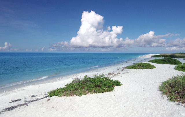 Ilhas Sanibel e Captiva em Miami