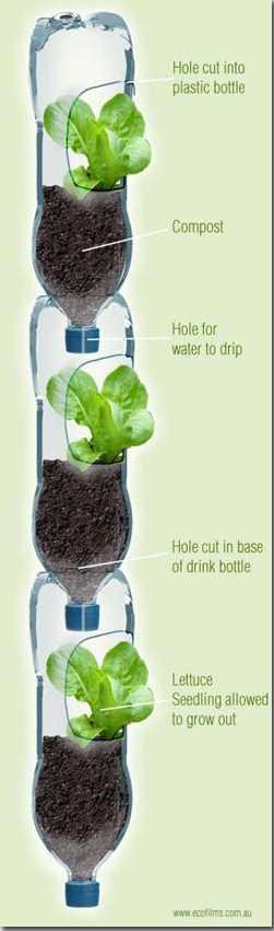 Tempat tanaman unik dan lucu dari botol minuman Aqua