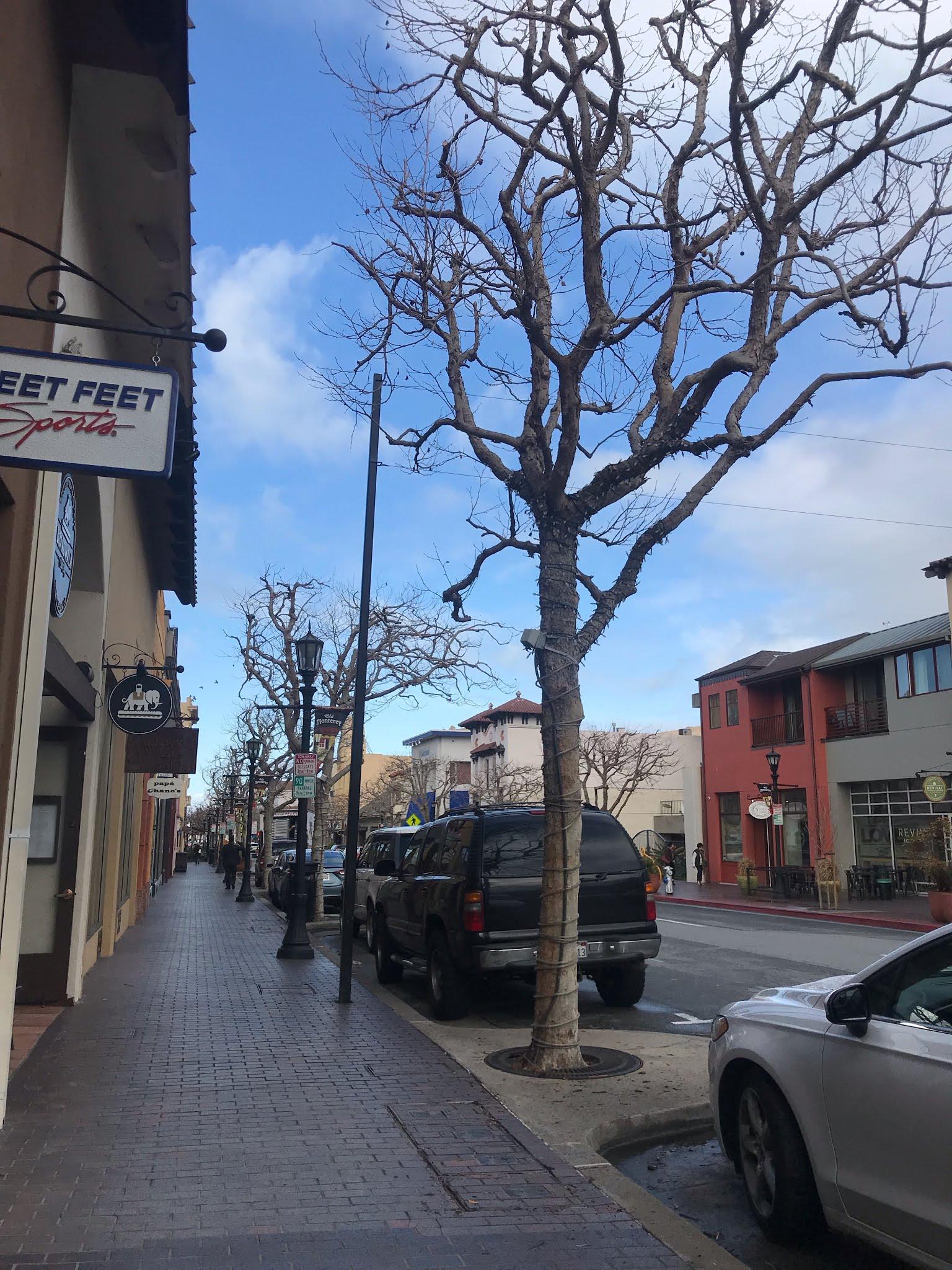 Ruas de Montery