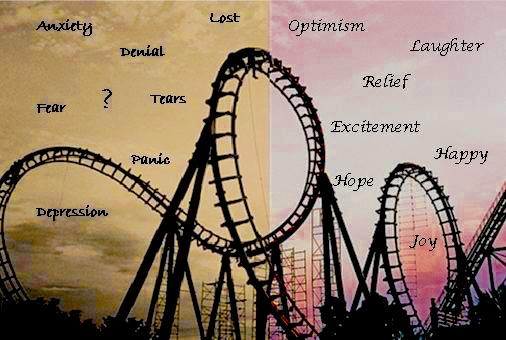descriptive essay about a roller coaster Report Abuse