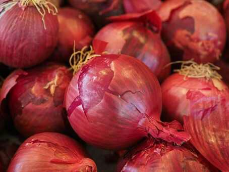 Benefits Of Onions Prevent Brittle Bones