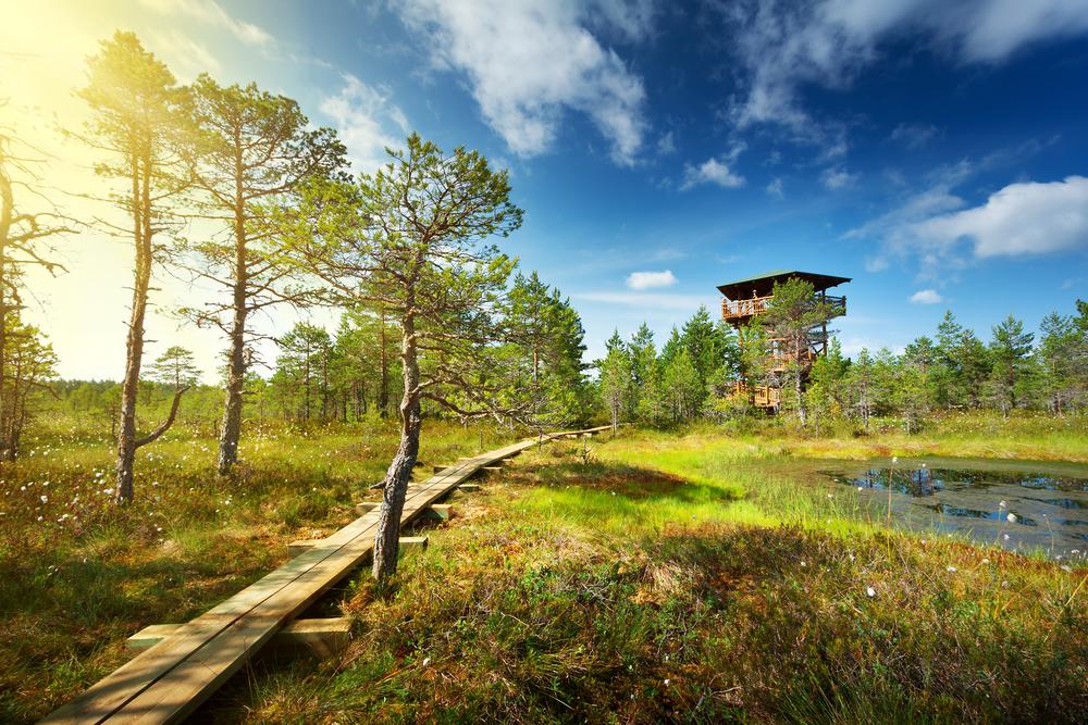 Saaremaa dating