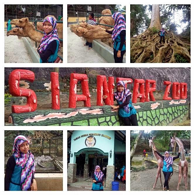 Taman Hewan Pematang Siantar Terlengkap di Sumatera Utara