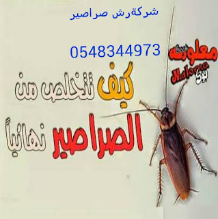 شركة رش الصراصير 0548344973