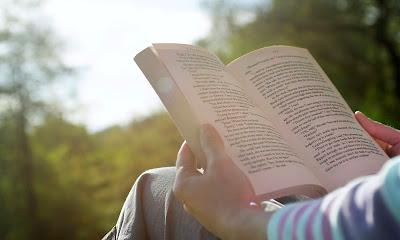 Estikçe, Çömez, Kitap okuma yarışı, J R R Tolkien, Yüzüklerin Efendisi, Stephen King,
