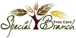 Brand Logo design by Mimi Pinto