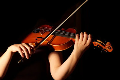 HISTORY AND QUESTIONS ABOUT  VIOLIN