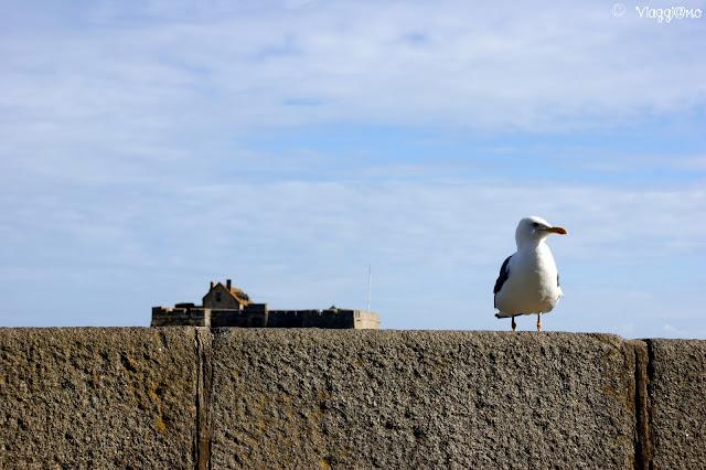 Vista panoramica del Fort National di Saint Malo