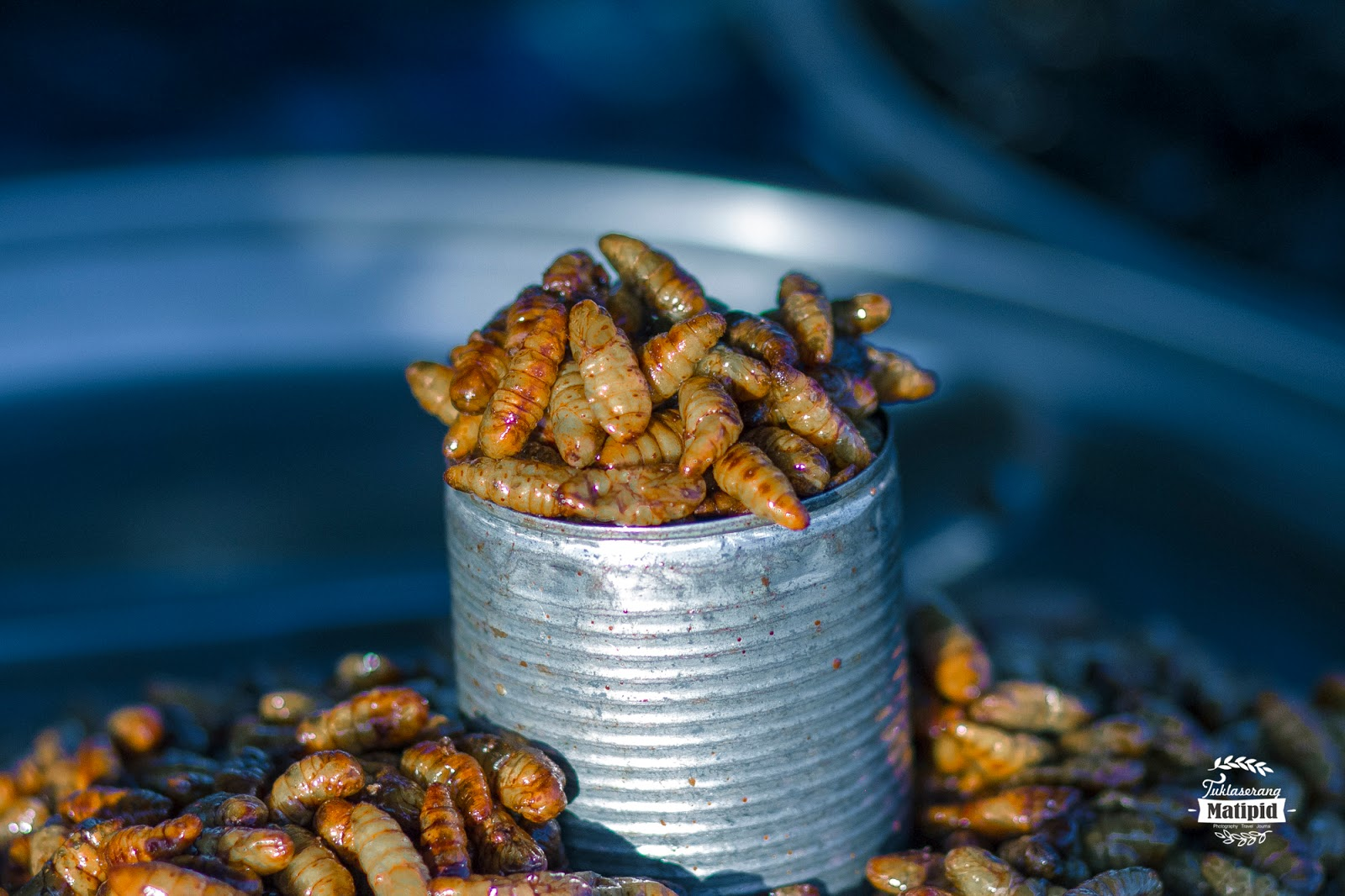 Silkworms pupae