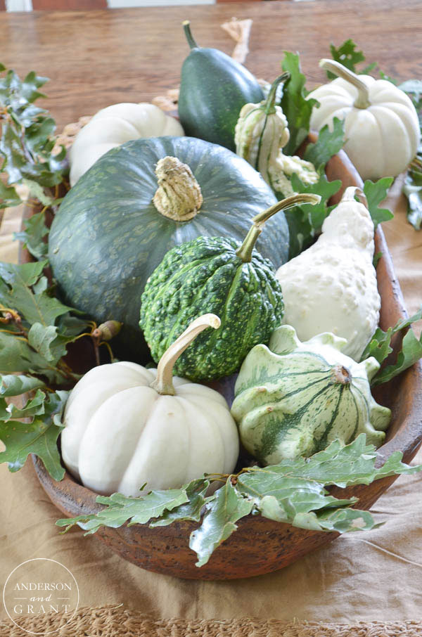 Gourds come in all shapes, sizes, and colors.  Find some interesting ones to create a fall centerpiece.  |  www.andersonandgrant.com