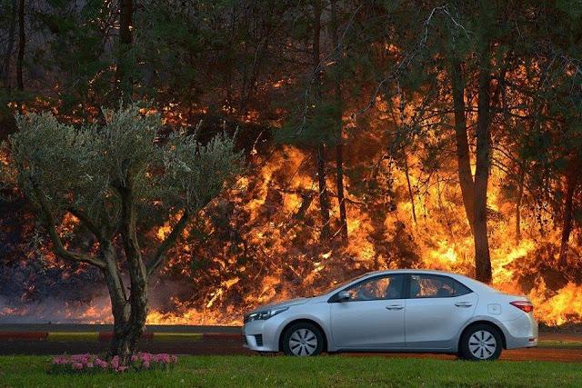 Astagfirullah, Ngeri! Kebakaran di Israel Seperti Api Neraka, Netizen: Ini Azab Dari Allah