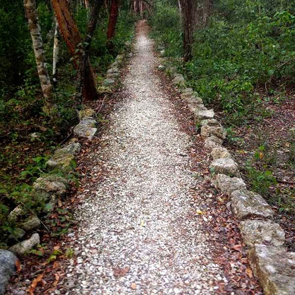 Un saché o camino blanco maya. Sacbé viene de las palabras sac, blanco  y be, camino. Desde la antiguedad, los  mayas hicieron sus caminos con tierra  blanca para que iluminaran con el reflejo de la luz de la luna y de las estrellas.