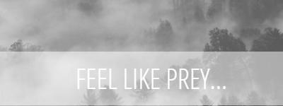 feellikeprey.blogspot.com