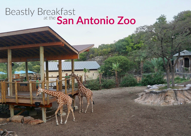 Beastly Breakfast for families at the San Antonio Zoo