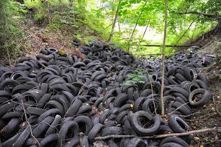 cientos de neumáticos en un bosque