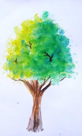 Cara mewarnai pohon dengan watercolor  MAYAGAMI