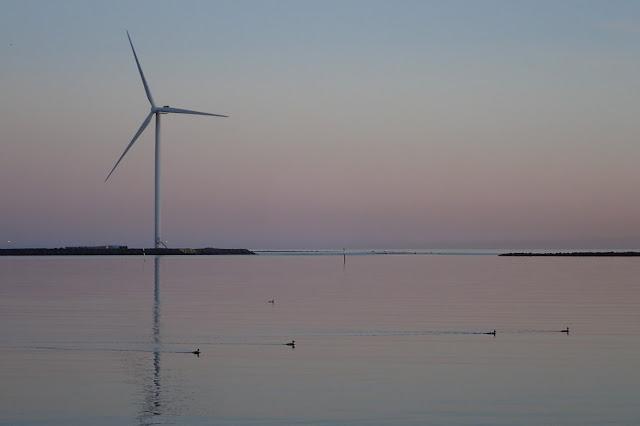 Auringonlasku, tuulivoimala ja vesilintuja.