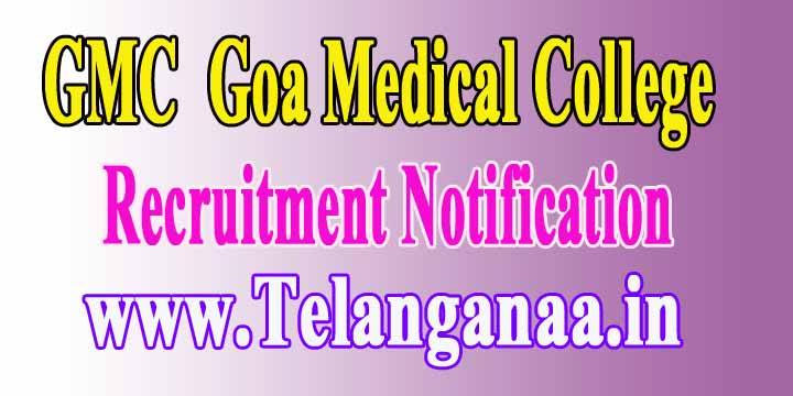 GMC (Goa Medical College) Recruitment Notification 2017 7