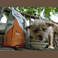 Nulo Freestyle Grain-Free Dog Food Review