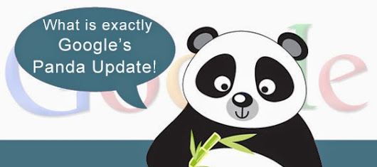 What is exactly Google's Panda Update!