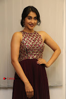 Actress Regina Candra Latest Stills in Maroon Long Dress at Saravanan Irukka Bayamaen Movie Success Meet .COM 0036.jpg