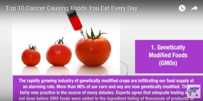 the positive and negative aspects of genetically modified food Genetically modified foods what would you do in the following situations despite the controversy surrounding them, genetically modified plants have taken root in our world as with any new technology, members of society have the responsibility to become informed about genetically.