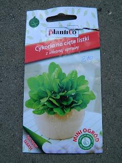 rośliny na balkon, taras, slow life