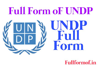 What is The Full Form Of UNDP ? UNDP Full Form
